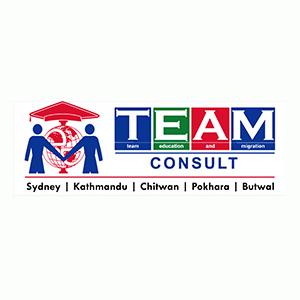team consult